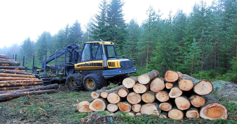 Trimble Forestry